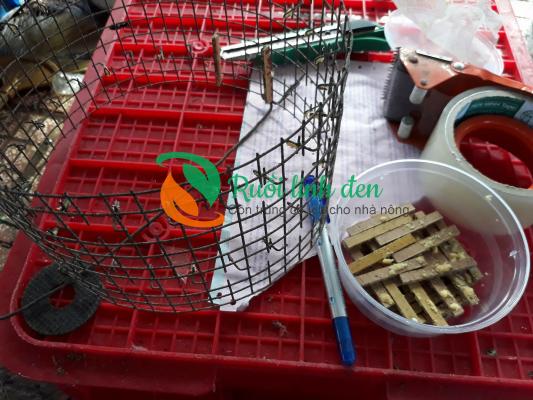 Tuấn Phương Trang chuyên bán trứng sâu canxi